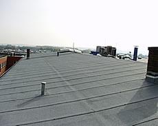 Dachdecker / Dachdesign